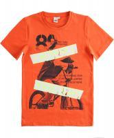 Tricou baieti caramiziu 4j807